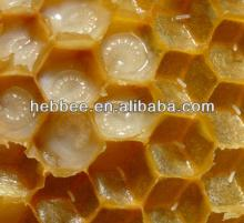 fresh  queen   royal   jelly  for sale