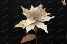 Champagne Christmas poinsettia  flower s, handmade  artificial   flower s