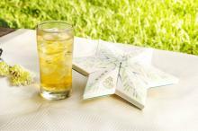 TeaSmile Freezing Cold Tea (18  Osmanthus  Oolong Teabags)