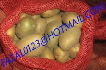 BANGLADESH I HIGH QUALITY FRESH GRANOLA  POTATO  AND DIAMOND  POTATO  FROM EXPORT TRADE ASSOCIATE WITH CH