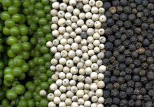 Black and white pepper 500gl - 550gl