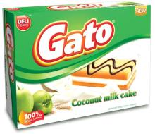 Coconut  Milk cake Gato