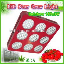 best led grow lights 2013 hydroponic led cultivation of black pepper grow mushroom equipment