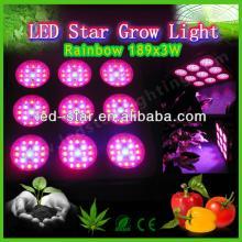 led grow light 2013 hydroponic led cultivation of black pepper grow mushroom equipment