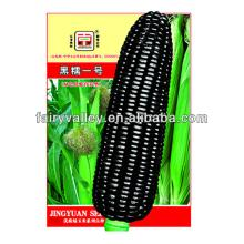 Hot Sale  Hybrid  Sweet Waxy Glutinous  Yellow /White/Black/ Purple  Corn   Seed s For Sale