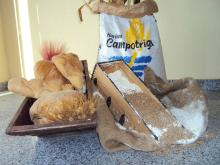 Campotrigal: Wheat Flour delivered in double layer PP bags