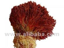 Adham Saffron (Bunch)