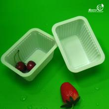 100% biodegradable corn starch disposable square  plastic  food container