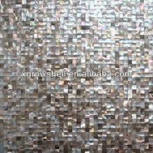 Square brown lip sea shell mosaic tile