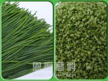 Freeze dried German chive