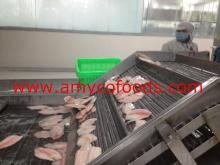 Frozen Tilapia Fillet natural