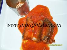how to cook pilchards in tomato sauce
