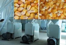 Maize  Peeling   Machine   Bean   Peeling   Machine