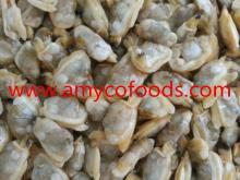 Frozen Short Necked Clam Meat at competitive price