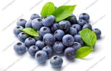 Blueberry extract color