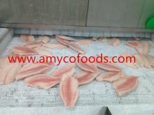 Tilapia Fillets Fresh Frozen High Quality Grade A
