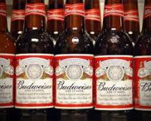 100% Beer Budweiser Budwar 500 ml cans