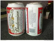 quality Budweiser Beer for sale now