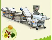Vegetable chopping cutting & washing cleaning processing line