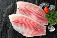 Frozen Tilapia Fillets high Quality at good price from professional Tilapia producer