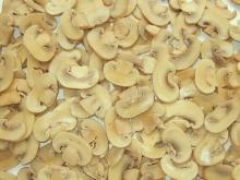 Canned Mushroom Agaricus