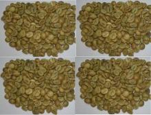 ROBUSTA Coffee Beans Clean Wet Polish