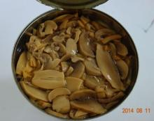 Fine Pieces of Chinese Canned Mushroom for Instant Fast Food for Sale