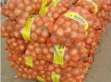 Yellow Fresh Onions