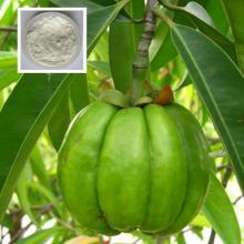 Garcinia Cambogia (60.3% Hydroxycitric acid (HCA) 250g powder
