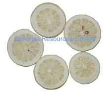 Freeze Dried Lemon