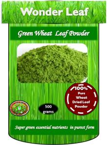 100% Pure Natural Fresh High Grade Nutrient-dense Green Wheatgrass Powder