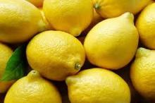 Fresh lemon for sale