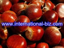 Chestnut Shell Extract