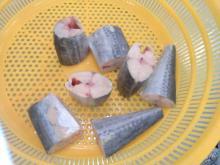 Spanish mackerel Tube cut