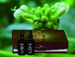 noni enzyme noni extract pure noni juice