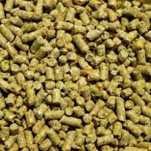 Chicken Layer Feed Feed for Sale