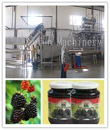 The reliable supplier for vegetable juice concentrate production line/plant/machine