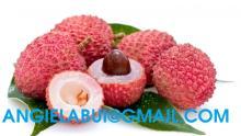 Frozen litchi, frozen lychee, lychee fruit