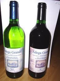 Gilvus Wine 75 cl glass bottle