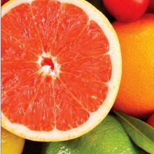 Grapefruit Extract GMP Manufacturer