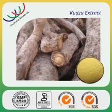 kudzu extract (pueraria)
