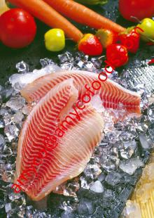 Tilapia Fillet shallow skinned High Quality