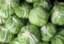 Fresh Frozen cabbages