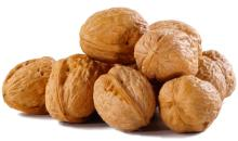 High quality walnuts in shell