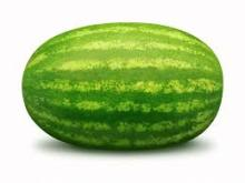 fresh water mellon