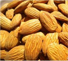 Sweet Almond Kernel