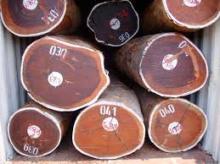 Hardwood Logs, Lumber, Sawn Timber, Flooring, Decking Materials.