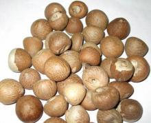 betel nuts.