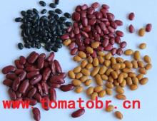kidney beans(red,speckled, white)
