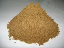 fish meal protein